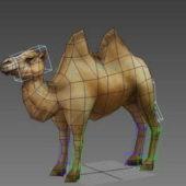 Animal Camel Rig