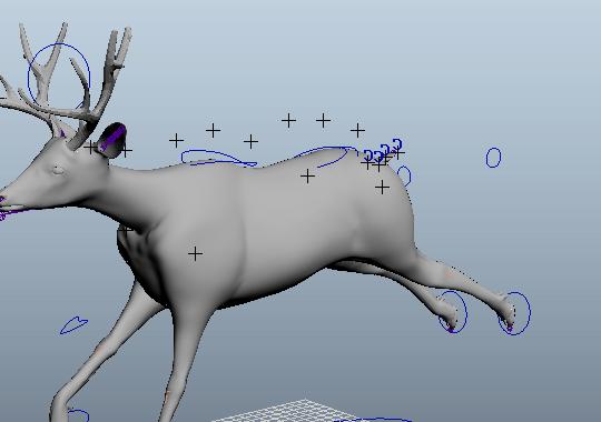 Animal Animated Deer