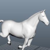 Animal Animated Running Horse