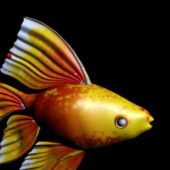 Yellow Aquarium Goldfish