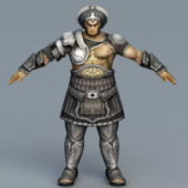 Armor Warrior Character Rigged