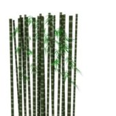 Bamboo Trunk Plant