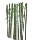 Nature Green Bamboo Trunk With Leaves
