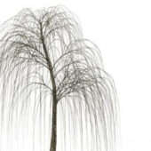 Bare Willow Green Tree