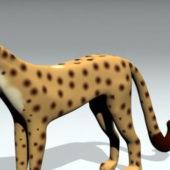 Lowpoly Animal Cheetah
