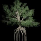 Big Green Tree Roots