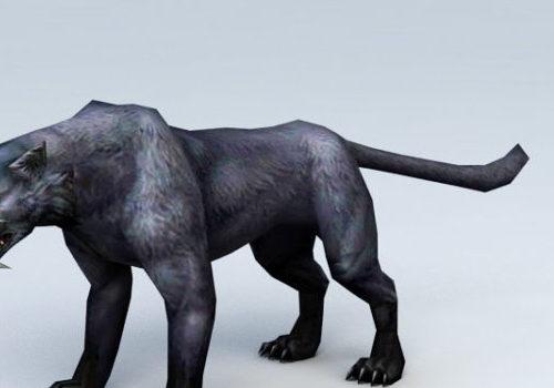 Animal Black Panther Animal