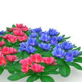 Garen Blue Red Flower Plants