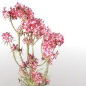 Japanese Bonsai Flower