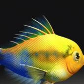 Cartoon Animal Fish Animation
