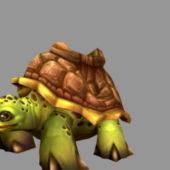 Cartoon Tortoise Character