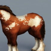 Animal Clydesdale Horse