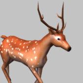 Wild Deer Running
