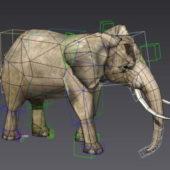 Elephant Walking Animated Rigged