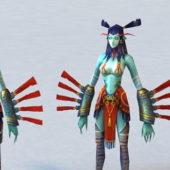Female Character Elf Assassin