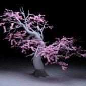 Garden Flowering Peach Tree