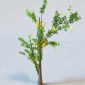 Generic Plant Tree