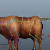 German Cattle Rigged