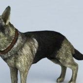 Realistic German Shepherd Dog