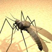 Giant Mosquito Animal