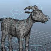 Goat Animal Rigged