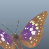 Great Purple Emperor Butterfly Animal