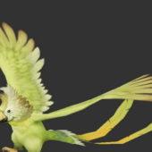 Beauty Quaker Parrot Bird