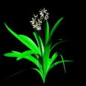 Cartoon Orchids Plants