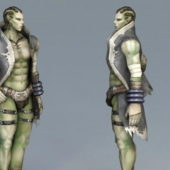 Half-orc Male Character