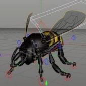 Honey Bee Animal Rigged