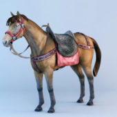Animal Horse With Saddle