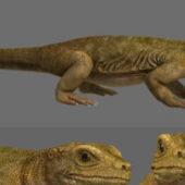 Sumatra Komodo Dragon Character