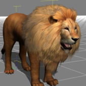 Lion Animal Avatar