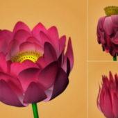 Lotus Flower Animation Rig