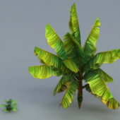 Nature Banana Tree
