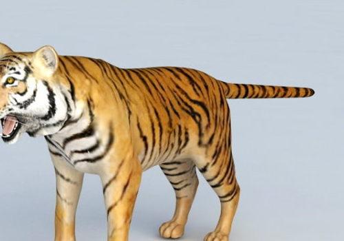 Realistic Malayan Tiger
