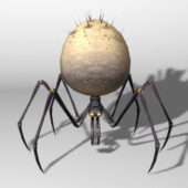 Orb Spider Animal