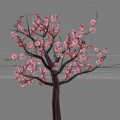 Garden Flowering Peach Tree