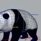 Animal Panda Rigged
