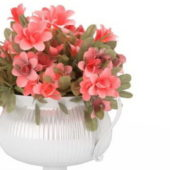 Vase Rose Flowers