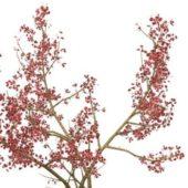 Red Leaves Wild Cherry Tree