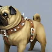 Beauty Pug Dog Animal