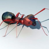 Robot Ant Character