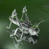 Locust Grasshopper Robot Character