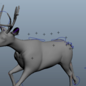 Animal Running Deer Rigged