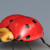 Seven-spotted Cartoon Ladybug
