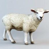 Animal Sheep Low Poly