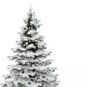 Nature European Snow Pine Tree