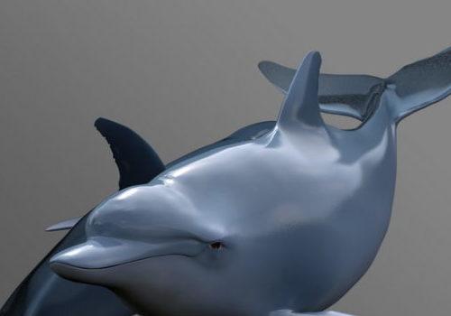 Swimming Dolphin Sea Animal