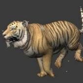 Animal Tiger Running Animated